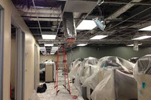 Commercial Mold Restoration